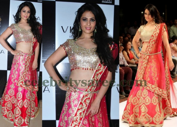 Anjana Sukhani Bridal Lehenga - Saree Blouse Patterns - bollywood actress wedding lehengas