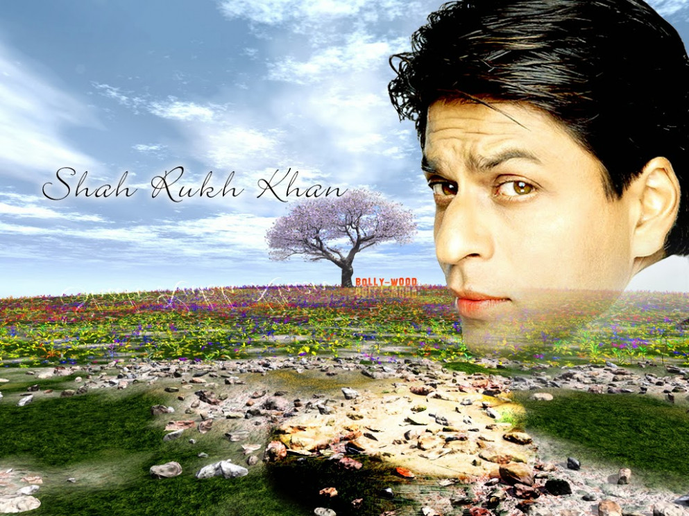 Bollywood Actor Shahrukh Khan Wallpapers HD ~ Desktop ...