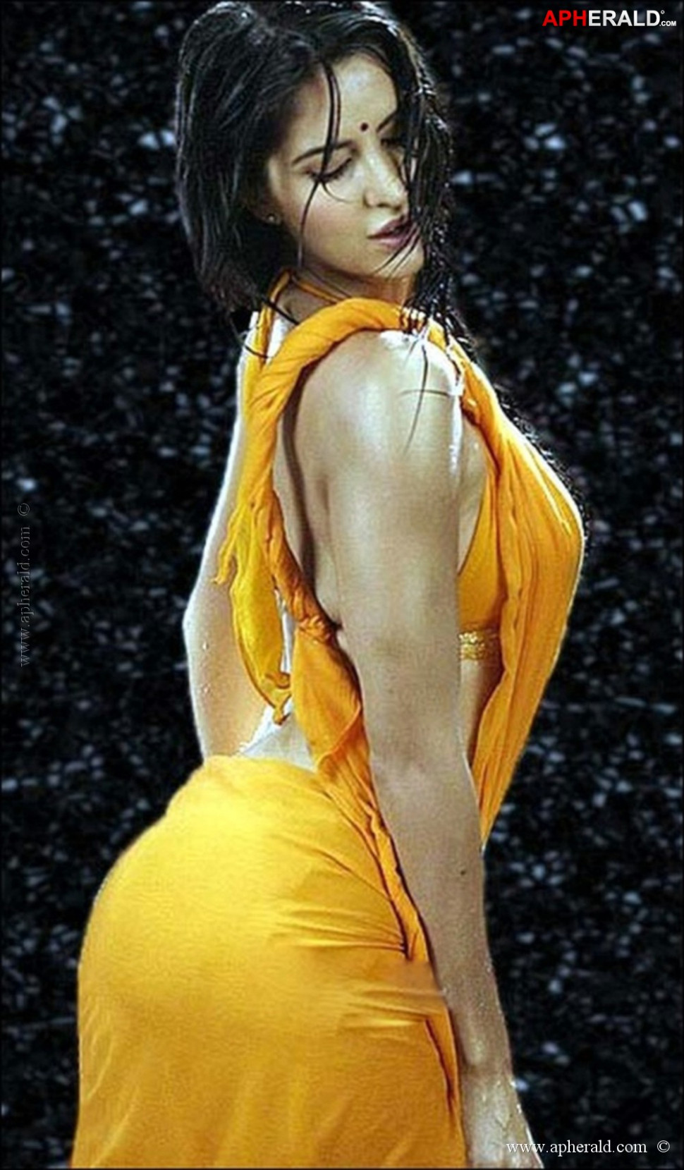 Bollywood Actress Hot Saree Pics - bollywood saree gallery