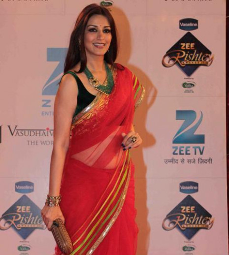Bollywood Actress Saree Collections: Net Saree