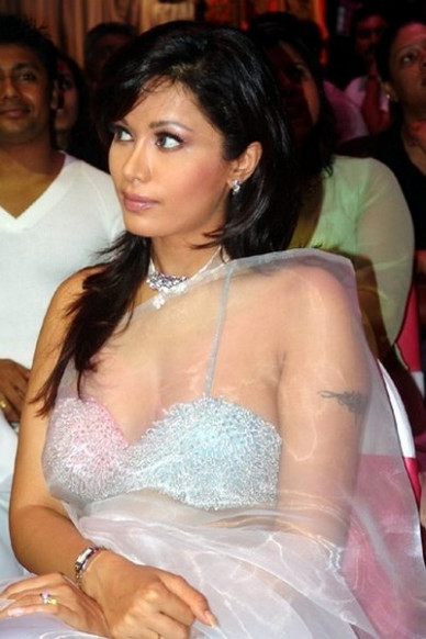 Bollywood Beauties In Hot Transparent Saree