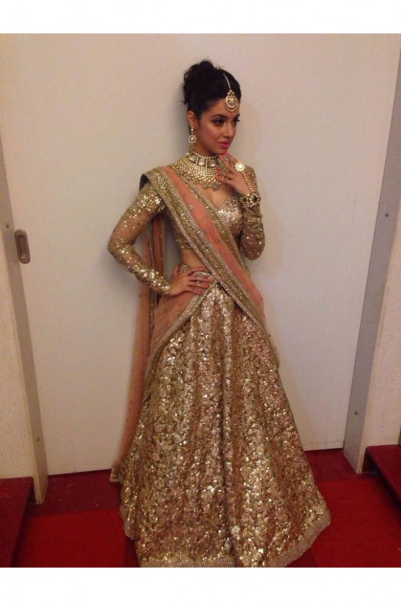 Bollywood Replica-Designer Gorgeous Gold Shimmer Net ...