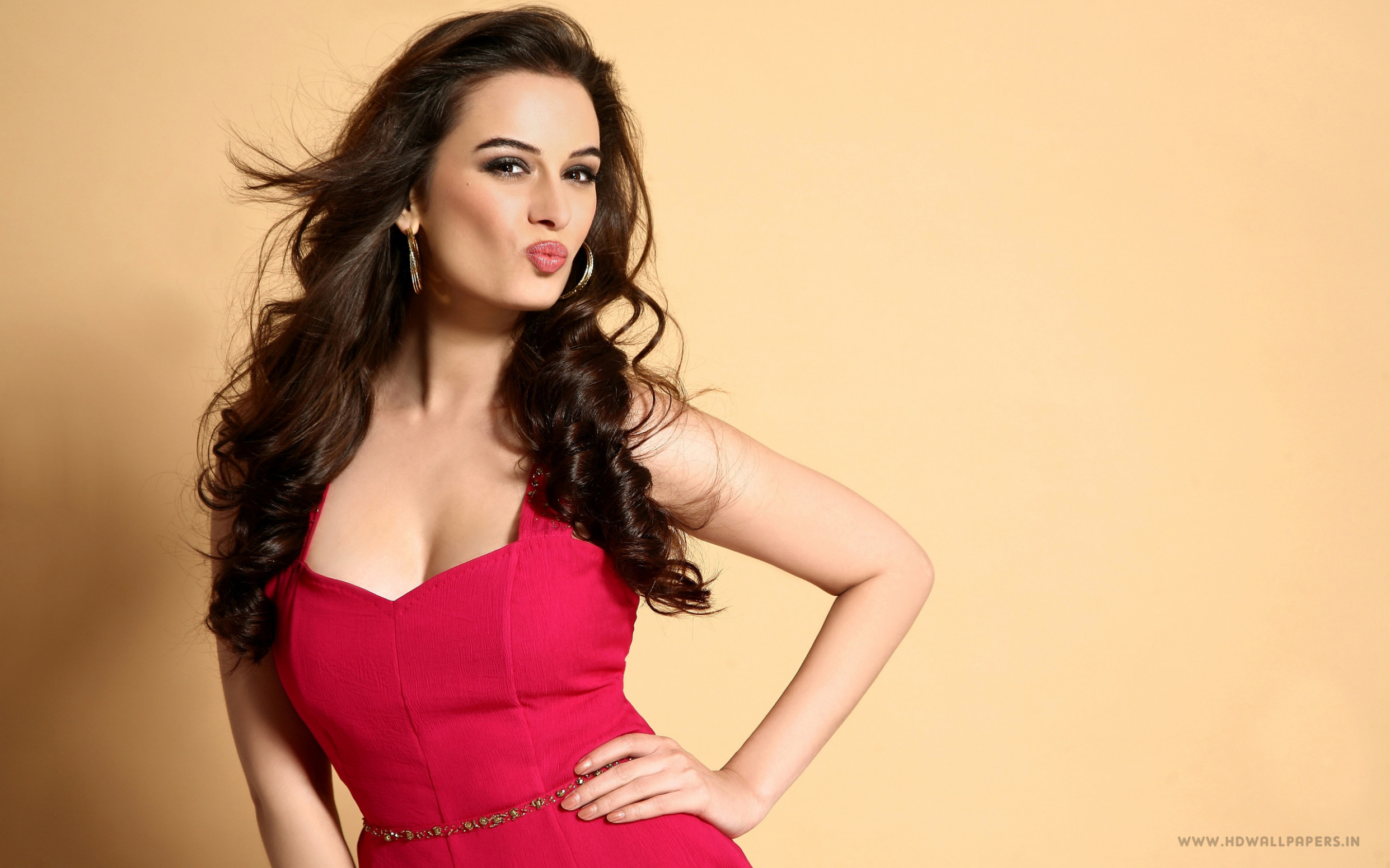 Evelyn Sharma Bollywood Actress Wallpapers | HD Wallpapers ...