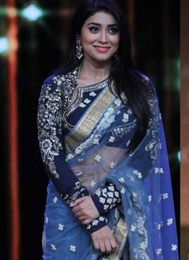 Grey Blue Net Bollywood Saree – Temple of Sarees