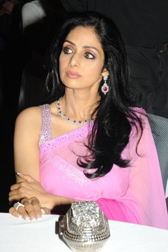 Indian Actress Sridevi Spicy Saree Photos Gallery ..