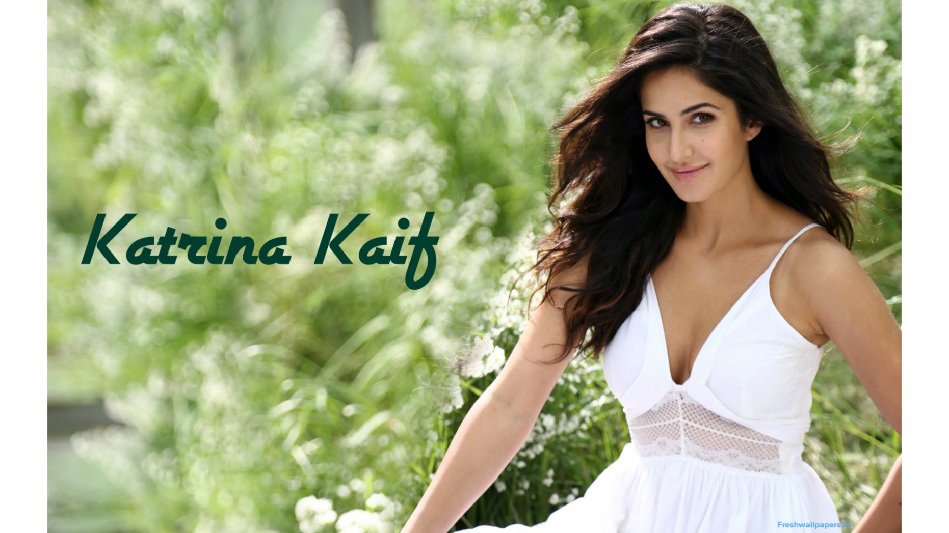 Katrina Kaif Pretty Bollywood Indian Girl Hd Wallpaper ...