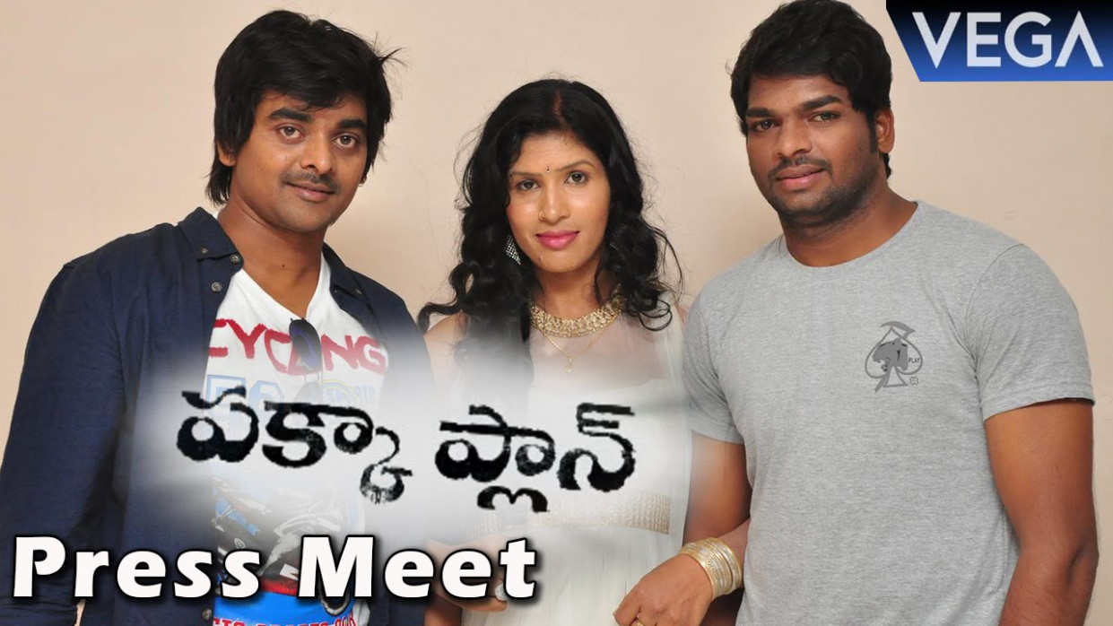 Pakka Plan Movie Press Meet || Latest Telugu Horror Movie ...