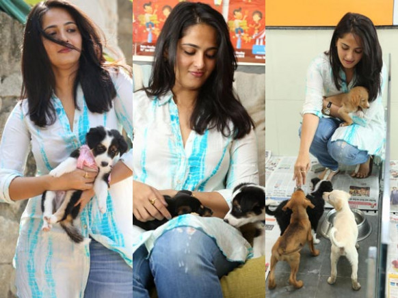Photos: Tollywood Stars With Their Pet Dogs - Filmibeat