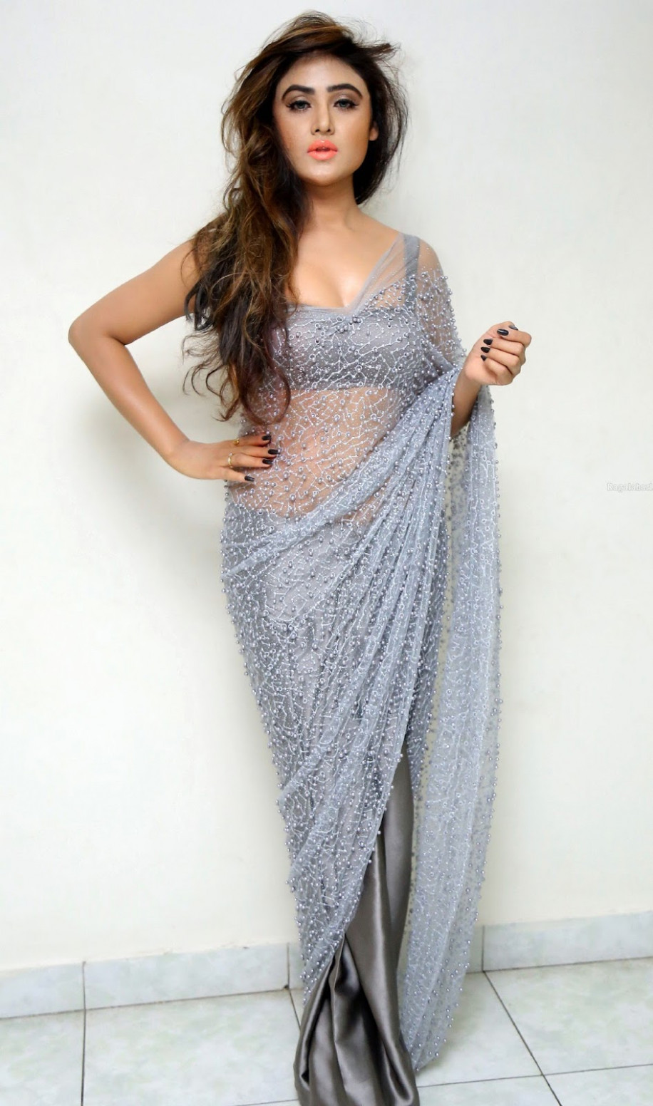 Saree Market: Grey Colour Netted Saree Photos
