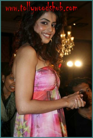Tollywood Actress Genelia Biography and Her Photo Gallery ...
