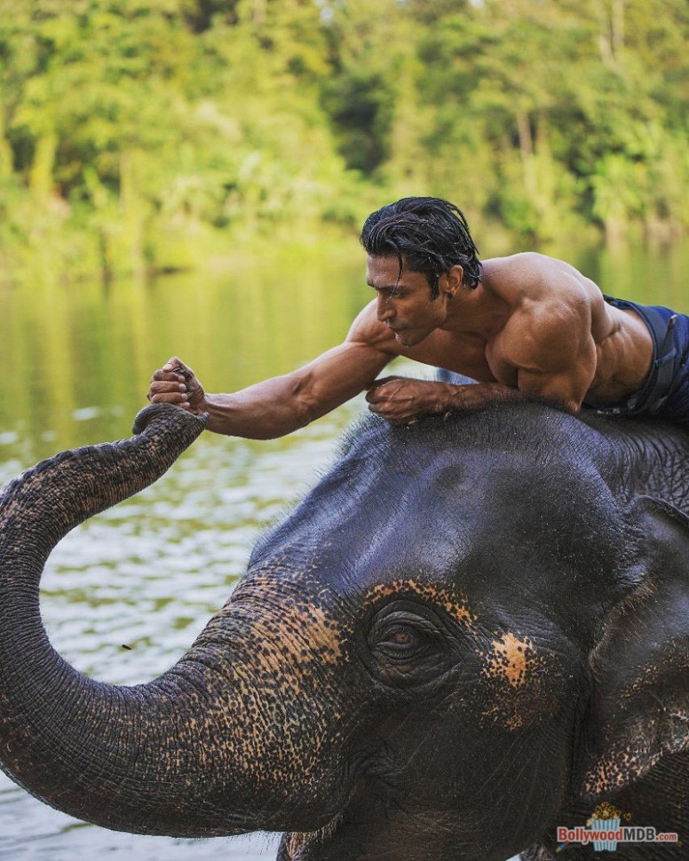 Junglee (2019) Movie HD Still | Image - 25 - BollywoodMDB
