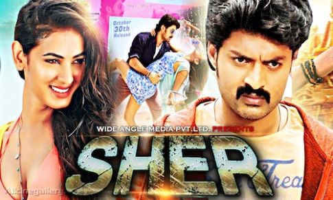 Sher 2017 Hindi Dubbed 720p HDRip 800mb | 9xmovies