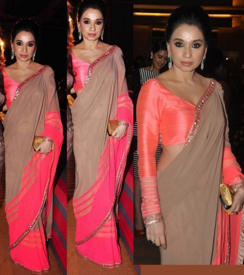 Bollywood Celebrities in Beautiful Designers Saree 2013