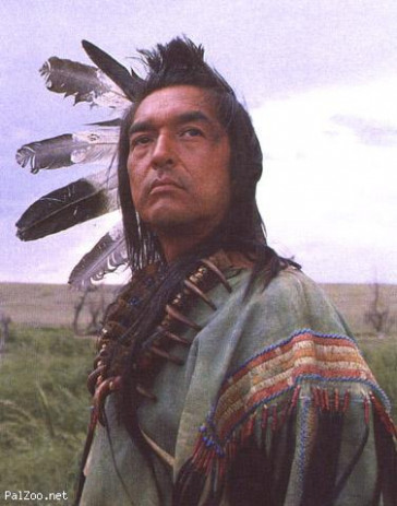 Dances With Wolves  Seetimaar-Diary of a Movie Lover