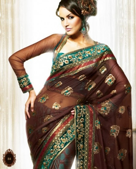 Dazzling Sarees: Long Sleeve Saree Blouse