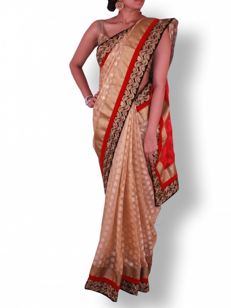 Golden Tissue Silk Saree with Gold Embroidery on Velvet