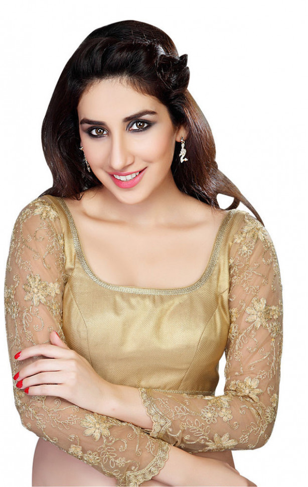 Gorgeous Long Sleeve Gold Saree Top Sari Blouse  eBay