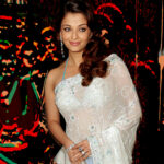 Hollywood & Bollywood: Aishwarya Rai Hot in Saree