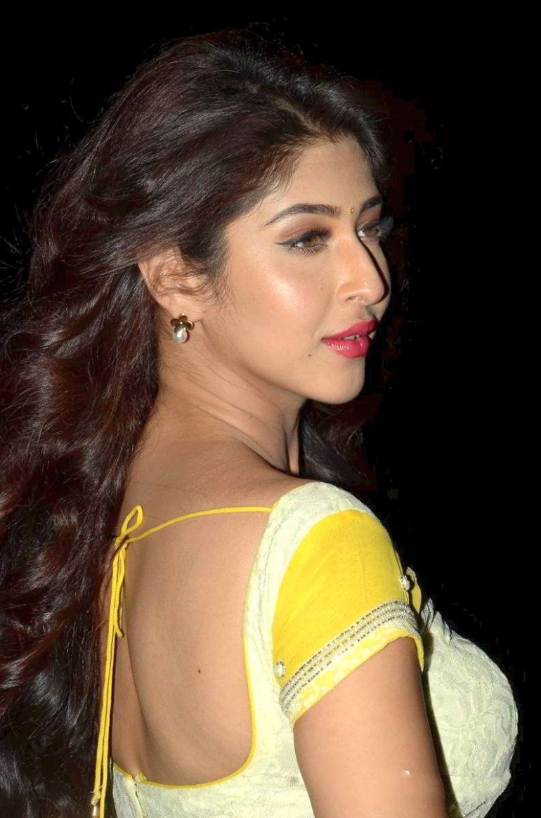 Hot Navel Pics: Super Sexy Sonarika Bhadoria Saree Curvy
