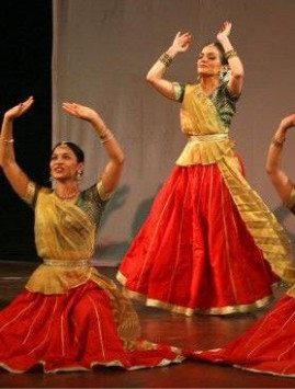 Indan Bollywood dance Folk Skirt and Blouse costume