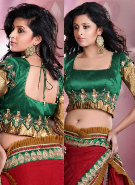 Latest Indian Saree Blouse 2012-2013 Neck Patterns  Fun