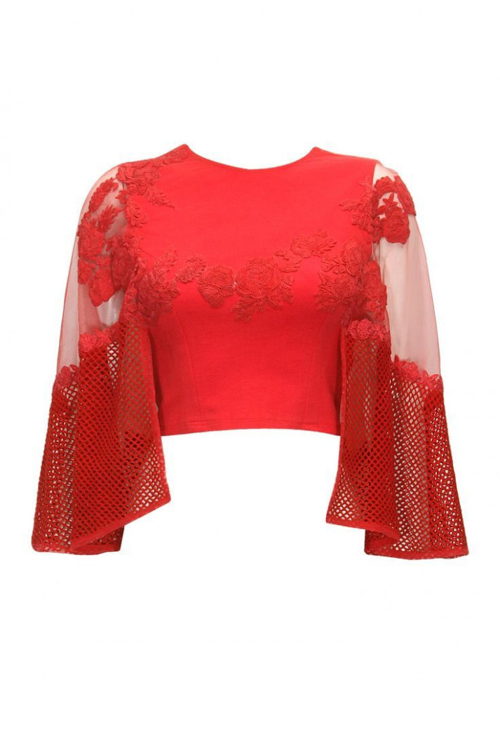 red crop top  Lehenga blouse designs, Blouse designs  - crop top with saree