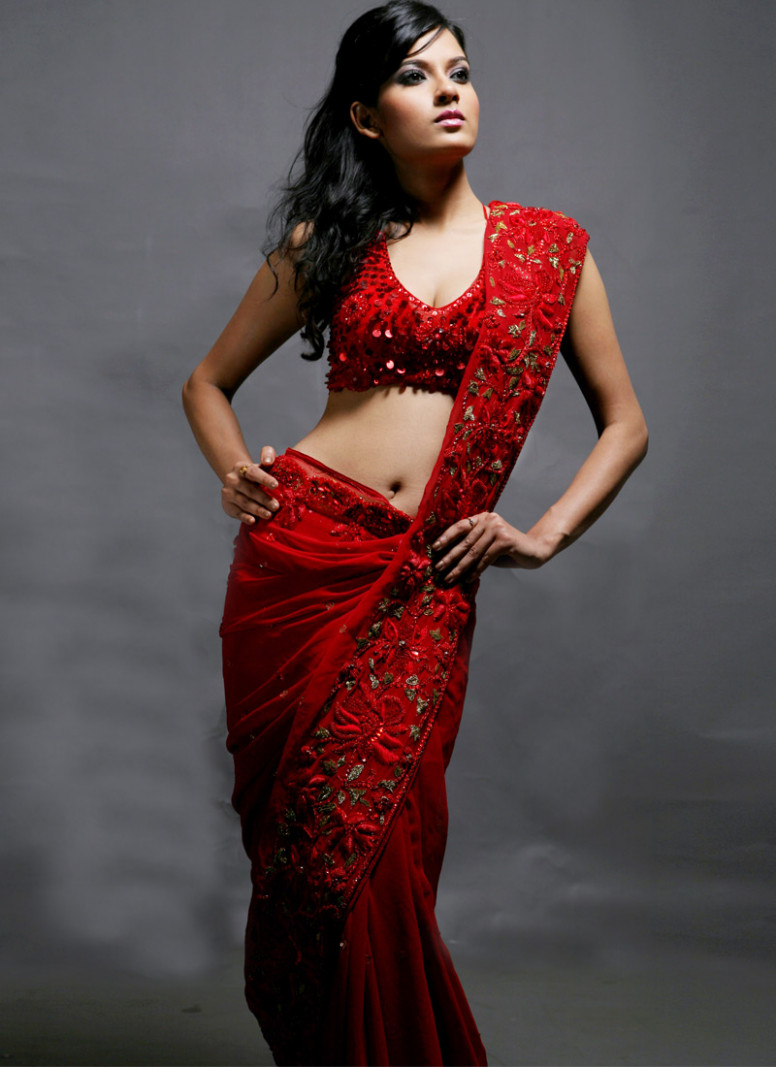 red designer saree embroidery blouse  Ash Blog