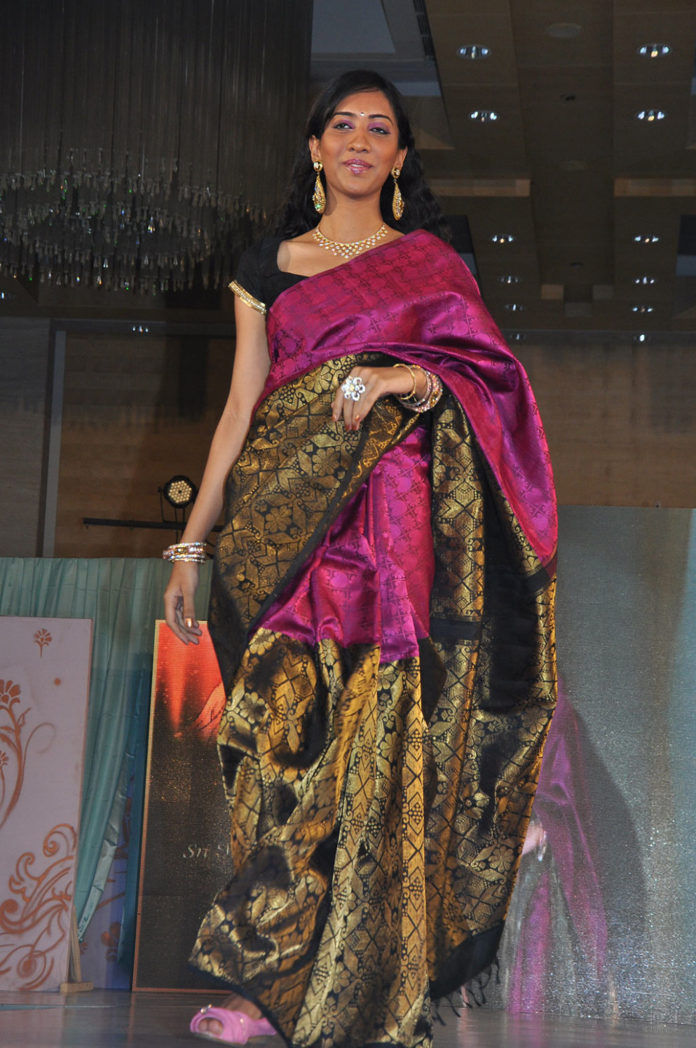 Sale news and Shopping details: Latest Silk Sari Designs