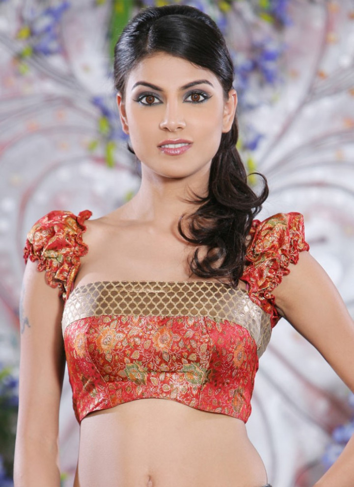 Saree Blouse Designs Catalogue ~ Bridal Wears