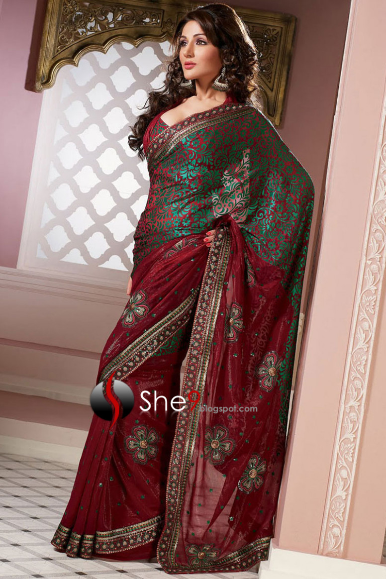 Saree  Indian Saree Collection 2010 - 2011  Indian Saree