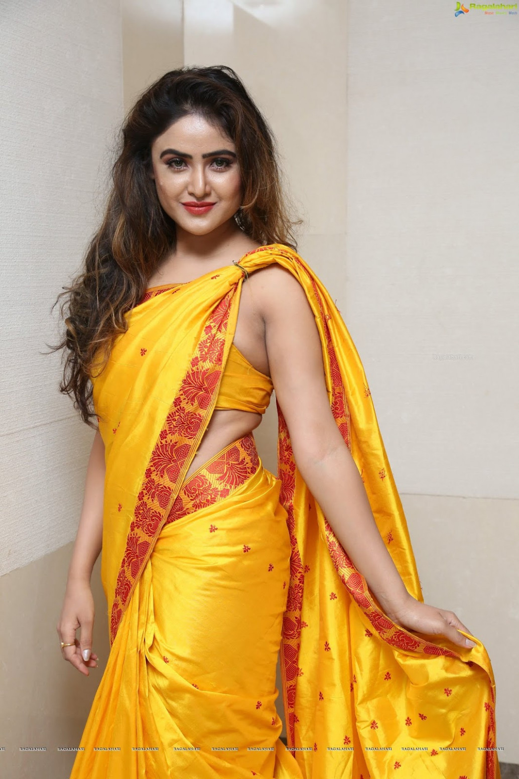 Saree Seduction: June 2018