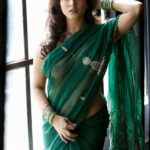 Sunny Leone Strips Her Transparent Green Saree