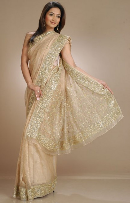 Tissue Saree Beautiful Styles - Saree Fashion