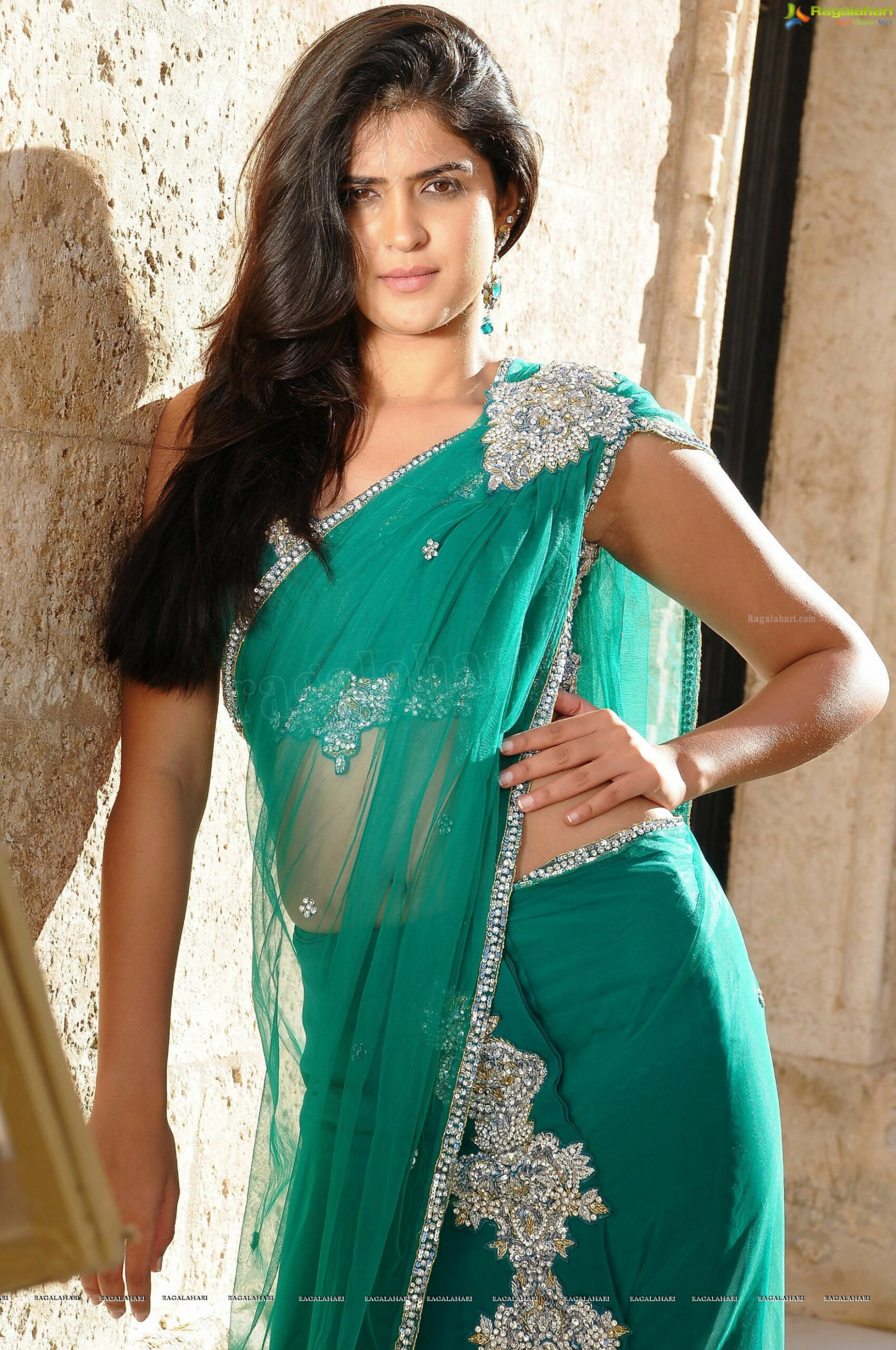 Tollywood HQ - Deeksha Seth In Hot Georgette Saree