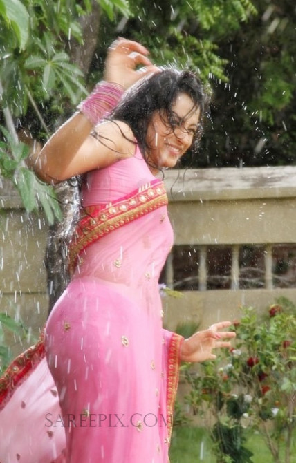 Trisha in wet saree photos - pink- Transparent - Saree