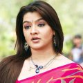 10 Actresses From North Who Look Like Telugu Girls – KostaLife – old tollywood actress list
