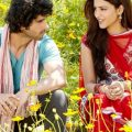 480×800 Bollywood Movies, Romantic, Flowers Field, Love ..
