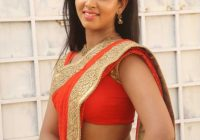 Actress Pavani Sexy Pictures in Orange Color Saree ..