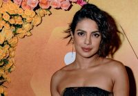 After bridal shower now Priyanka Chopra celebrates ..