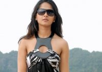 Anushka Tollywood Girl Wallpapers | HD Wallpapers | ID #3434 – anushka tolly wood