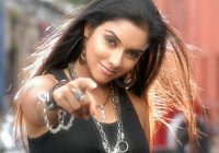 Bollywood Actress Asin All Latest HD Wallpapers 2012 ..