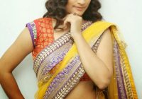 Bollywood Actress In Saree: Santhoshini Sharma Hot Navel ..