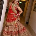 Bollywood Wedding Dresses – Gown And Dress Gallery – bollywood wedding