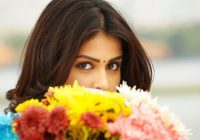 Genelia in Telugu Movie #4166607, 1920×1080 | All For Desktop – sites to download tollywood movies