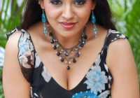 Heroine Hot Photos Wallpapers Videos: Tollywood Hot Photos – telugu tollywood