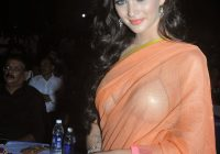 High Quality: Amy Jackson Hot in Transparent Saree – bollywood actress transparent saree photo