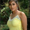 Kausha: Tollywood Bombshell Item Girl Biography Wallpapers ..