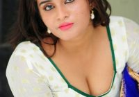 Latest 2015 Telugu Actress Harini Saree Images | Harini ..