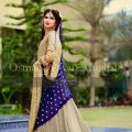 Latest Pakistani Bridal Dresses Pictures 2017-2018 ..