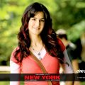 New York Bollywood Movie Wallpapers (1) – bollywood movie wallpaper